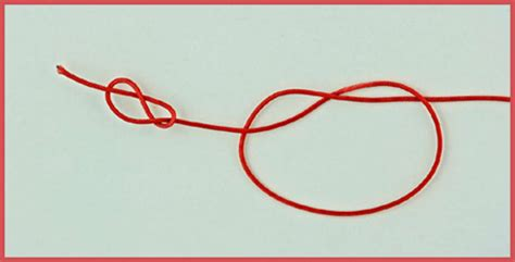 Arbor Knot - Favorite Knots for Sports - Love The Outdoors